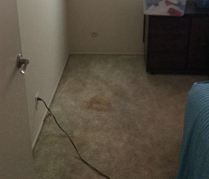 A carpeted bedroom without any of the drying equipment.