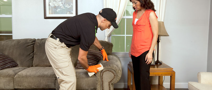 Palos Verdes Estates, CA carpet upholstery cleaning