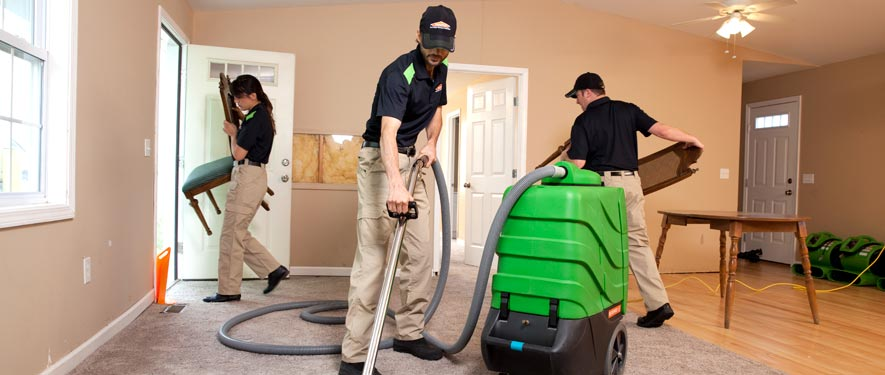 Palos Verdes Estates, CA cleaning services